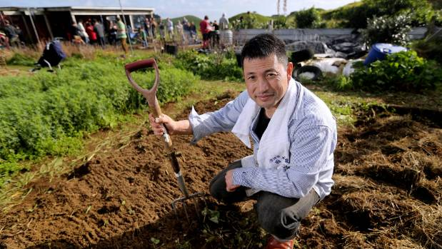 Kenji Sekine, from Northern Japan, worked in the garden at Parihaka at last year's festival.