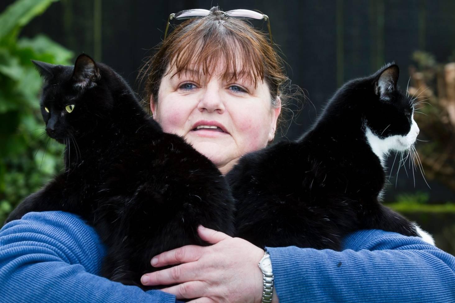Disgust As Filthy Maggots Burgle Kitten Inn Steal Safe From Wellington Charity Stuff Co Nz