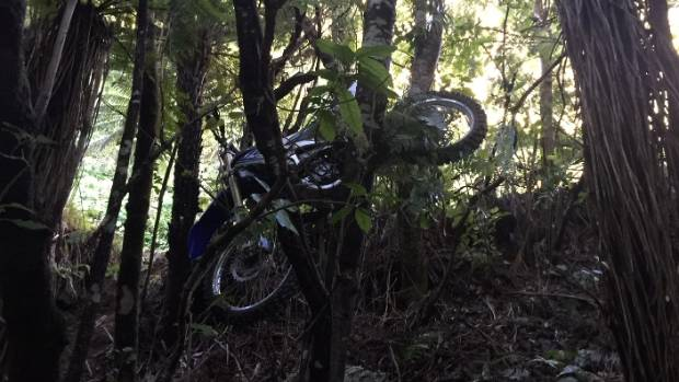 Campbell's bike ended up wedged in the fork of a tree in the thickly wooded Akatarawa Forest, between Upper Hutt and ...