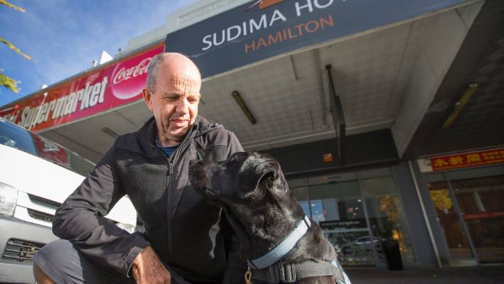 Man And Assistance Dog Denied Accommodation In Hamilton Stuff Co Nz