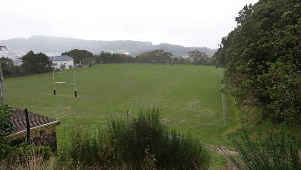 The Prince of Wales Park playing fields may be out of action for three years.