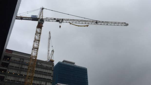 Protesters scale the crane near parliament.