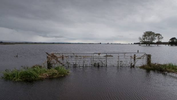 Plenty of farms in Waikato and Bay of Plenty are still recovering from flooding in April.