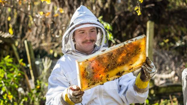 18-year-old Rupert Young Davies has been studying beekeeping by correspondence.