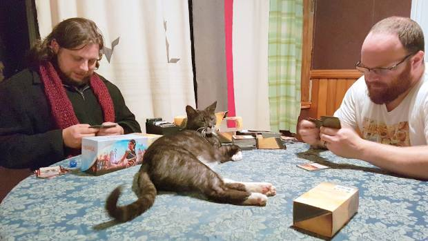 No evening of board games is complete without Lead the cat enforcing the rules.