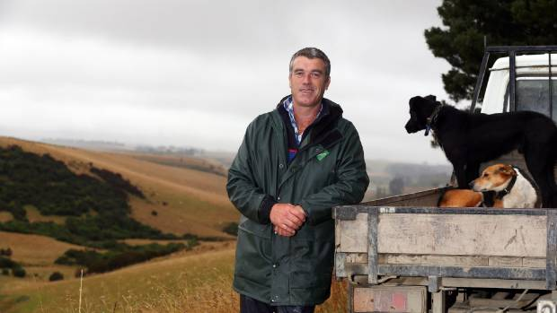 Federated Farmers meat and fibre chairman for South Canterbury Miles Anderson:  Farmers are always nervous coming up to ...