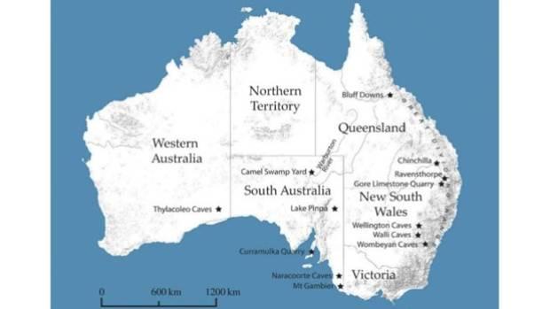 Distribution of known Australian megapode avian megafauna according to Shute's study.