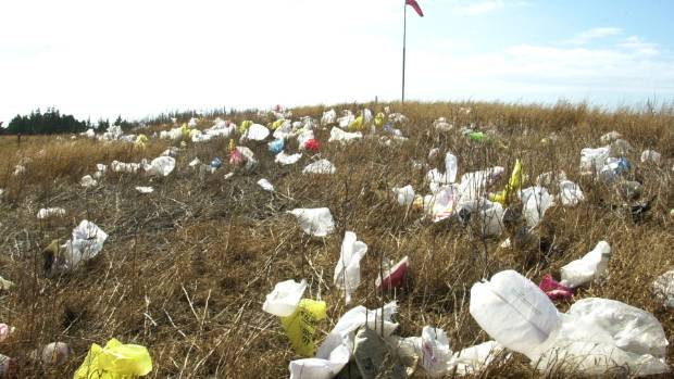 A new study has shown 65 per cent of Kiwis would support a levy on plastic shopping bags.