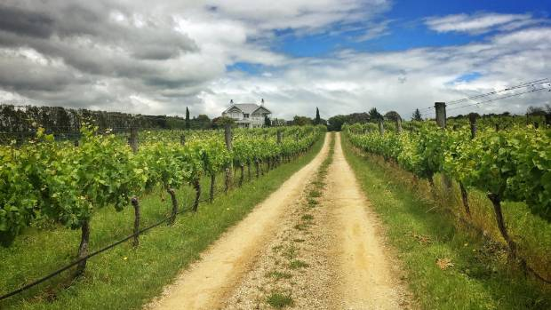 Savour a drop or two of pinot noir or riesling at Vynfields, in the boutique wine growing region of the Wairarapa near ...