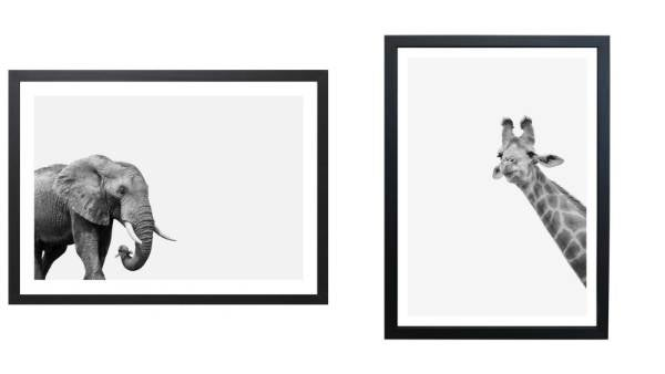 These A3-sized Elephant and Giraffe art prints would be a great addition to a nursery. By Hector Rose, available from ...