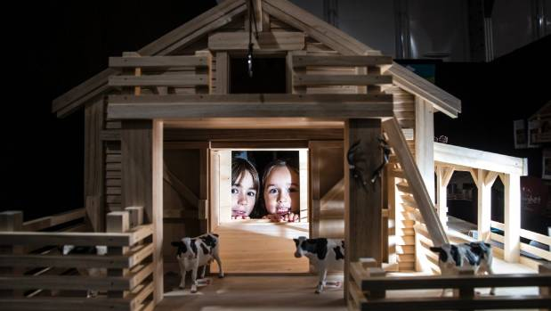 A Taranaki family have started a business building wooden farm sheds and play houses for children. L-R: Maddi Goodchap ...