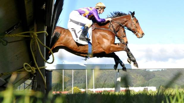 Sea King has returned to form with a well deserved Awapuni Hurdles victory at Trentham.