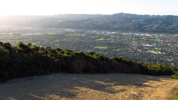 The view from Te Whiti Firebreak in Lower Hutt.