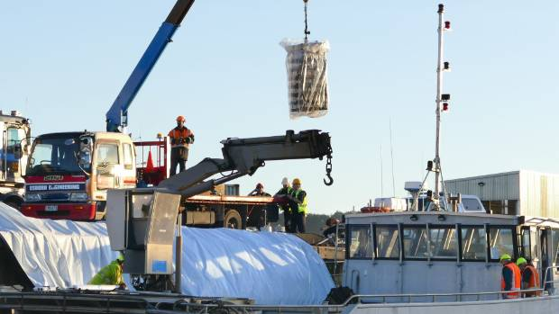 Stewart Island farmed oysters infected with Bonamia ostreae are unloaded in Bluff under Ministry for Primary Industries ...