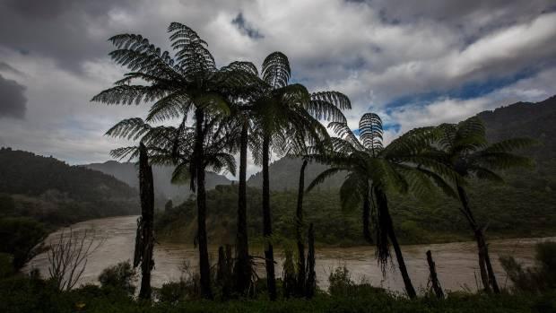 View of the Whanganui river from Pipiriki.