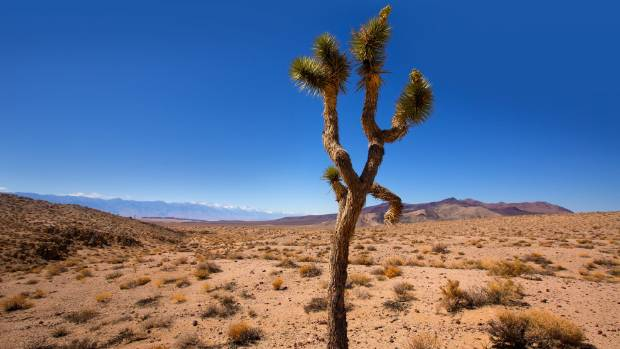 Temperatures In Death Valley California Are Forecast To