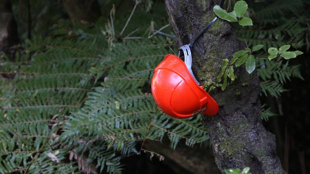 A helmet left at the crash site.
