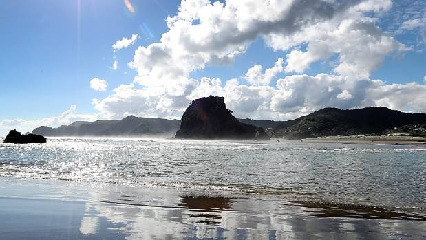 Piha Beach, in West Auckland, where the fires occurred.