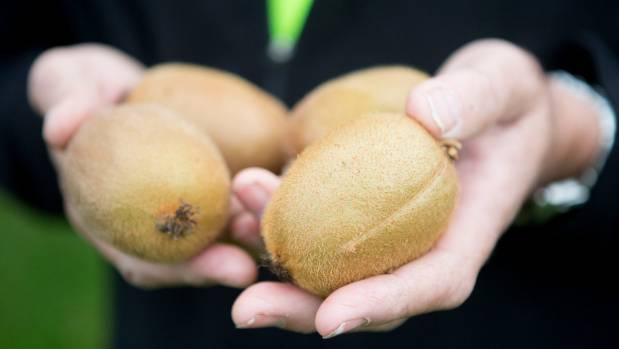 Growers are taking a class action against the Government over the Psa incursion.