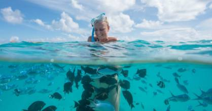 Snorkelling just off a deserted island – the best we've ever come across.
