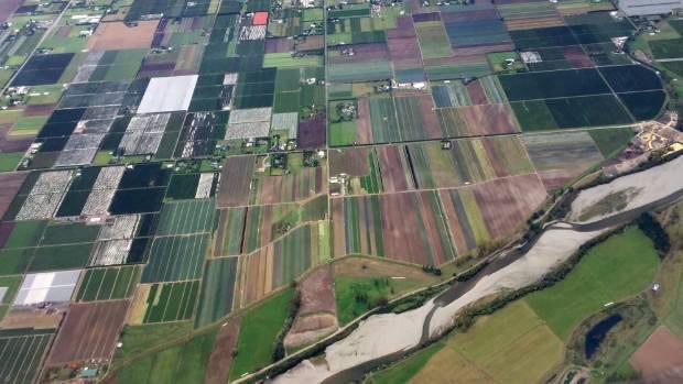 The Waimea River and the patchwork beauty of the productive Waimea Plains.