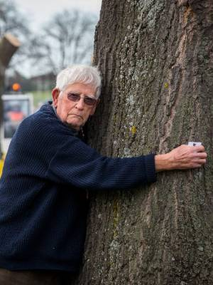 Grasmere St resident Don Boot gives one of the remaining condemned pin oaks a final hug before it is cut down on Tuesday.