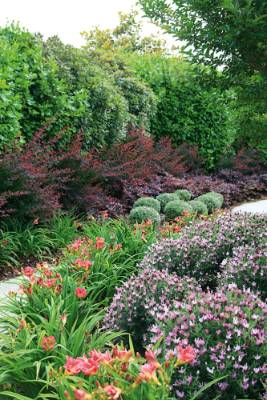 A mix of different plant colours and forms provide interest year round.