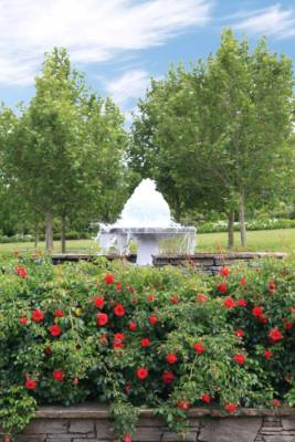 The view from the home's front door includes a tranquil fountain and vibrant roses.