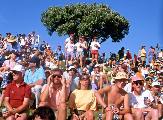 Crowd watching cricket at the Basin Reserve, 1992.