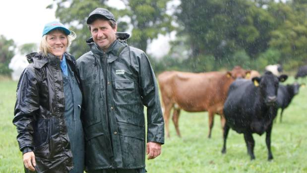 Collingwood Dairy Farm Couple Still Seeking Investor For