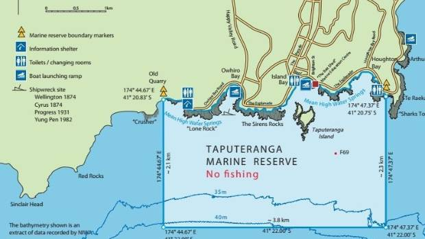 Taputeranga Marine Reserve is only 6km from Wellington's city centre.