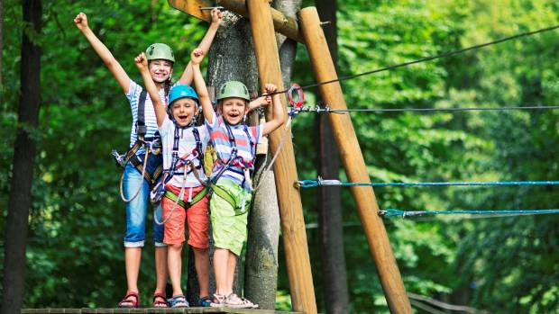 Image result for Tree Adventures auckland kids