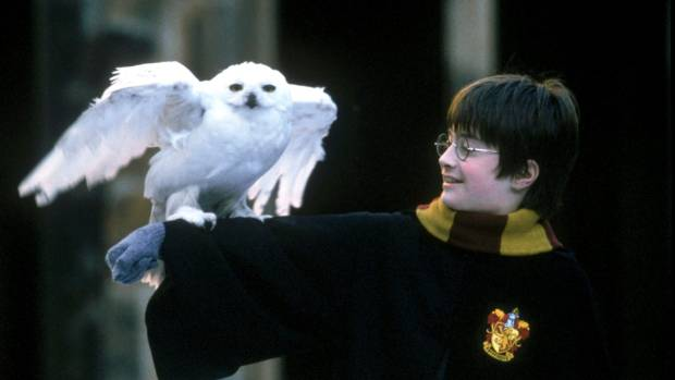 Two new Harry Potter books on the way this year