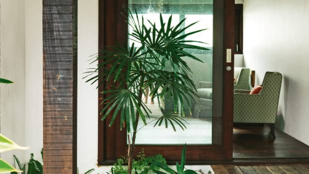 Every nook is filled with textured tropical plants, such as this little garden outside Geoff's office; the office, with ...