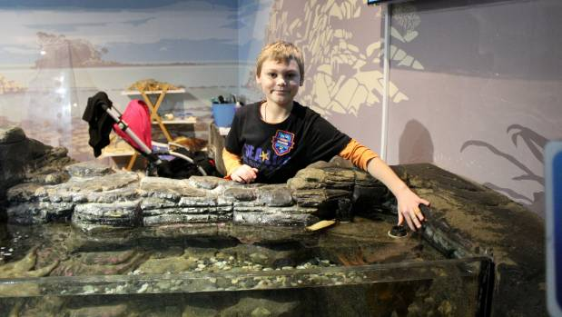 Bethells Beach boy Ayden Young said he loved working as an ocean ranger, and couldn't wait to tell his friends.