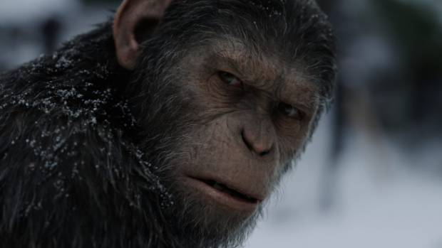 Andy Serkis as Caesar in Twentieth Century Fox's War for the Planet of the Apes.