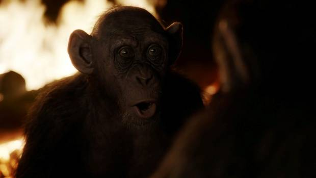 Bad Ape came in for some special Weta Digital attention during the making of War for the Planet of the Apes.