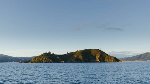 Matiu/Somes Island is the largest of three islands in the northern half of Te Whanganui-a-Tara (Wellington Harbour).