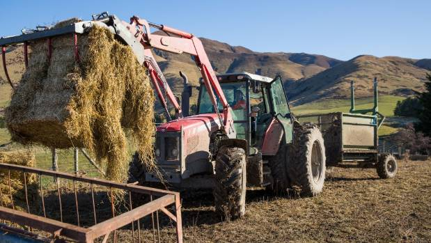 In winter John Harrison spends five hours a day feeding out baleage and shifting breaks on fodder beet and kale crops.