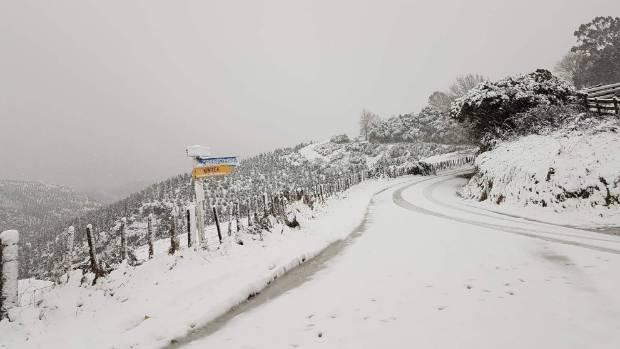 Snow landed in Kiwitea.