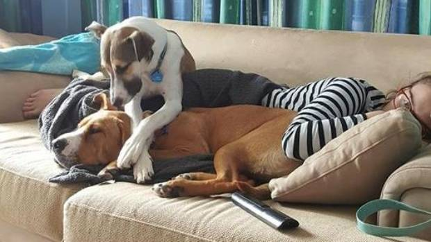 Esther and her mum were napping on the couch when Levi realised he must join the slumber party.