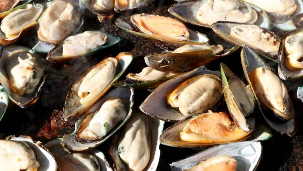 Two of the four people who are unwell have eaten mussels gathered on Napier's foreshore.