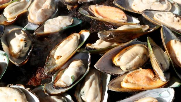 Mussels gathered from Napier Marina are to blame for three people falling ill to a serious disease.