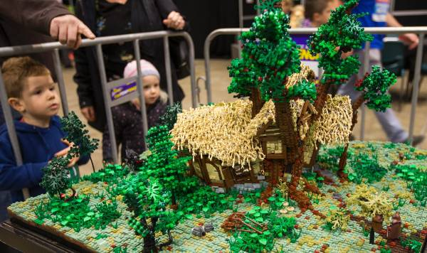 Thousands of tiny Lego pieces were used to build this house depicting a scene from The Hobbit.