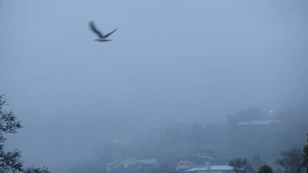 Morning fog over Wakatu in Nelson on Monday.
