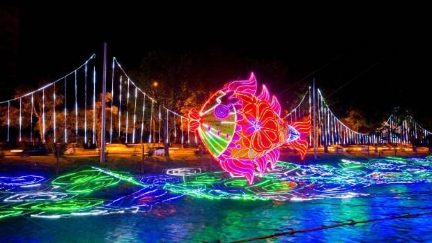 A giant illuminated fish floating above the Medellin River decorated by specially designed Christmas lights as part of ...
