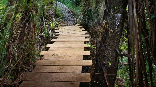 The first boardwalk Steve built, which leads to the outdoor bath.