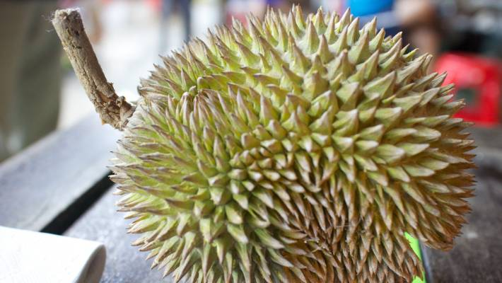 Durian known as the world's worst-smelling fruit