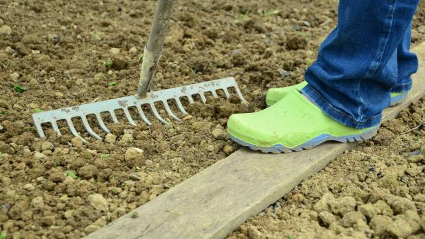 Avoid standing on wet soil if possible, but if you must then use a plank to spread your weight and avoid soil compaction.