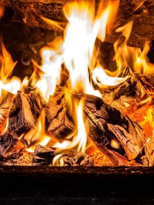 A roaring fire maybe a thing of the past unless you've stocked up as supplies of firewood  run out in Taranaki with ...